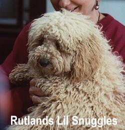 Snuggles_250
